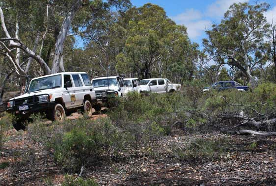 4WD's travelling on a bush terrain as one of the 4WD course under recreational training.