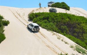 White colored 4WD on a sand track.