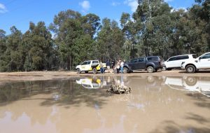 4WD stopping near a swamp due to a flat tyre.