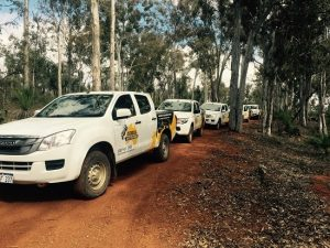 Eureka team on their 4WD vehicles travelling as a convoy.